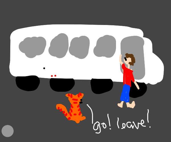 Cat encourages you to get in the bus