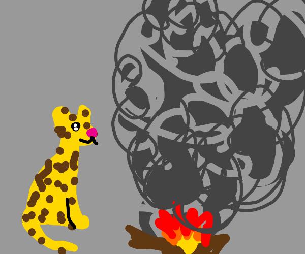 Random leopard in front of smoke