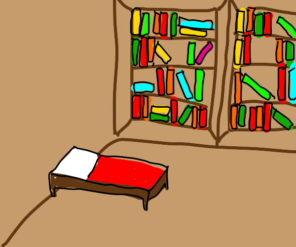 a bed in a library