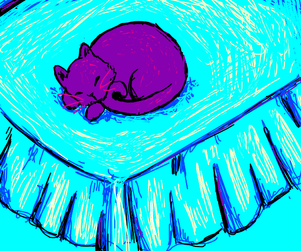 Purple cat on bed