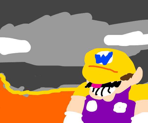 wario won, but at what cost?