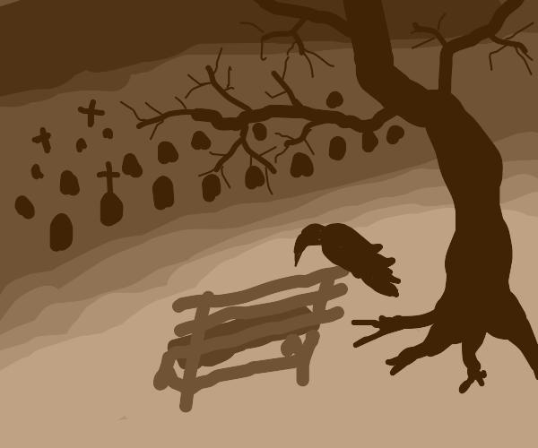 Bench under tree overlooking graveyard