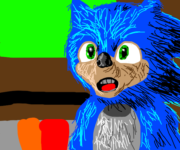 Sonic The Actual Real Life Hedgehog Drawception