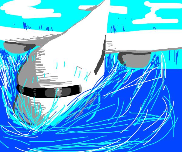 A plane crash in the sea