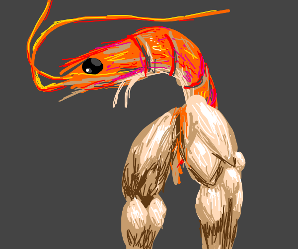 Shrimp with muscular legs