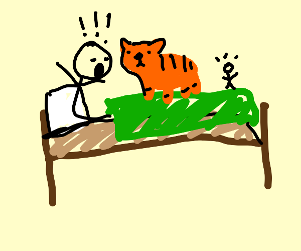 man wakes up to tiger & little man on his bed