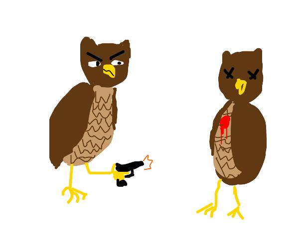 Owl kills another owl