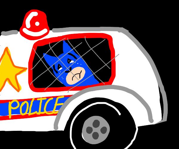 Batman in cop backseat, he no hava car