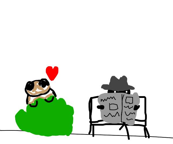 love struck toad stalking a rando