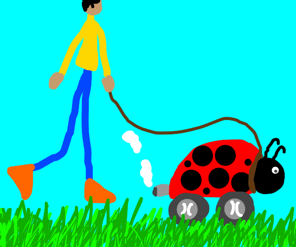 Walking your Motobug