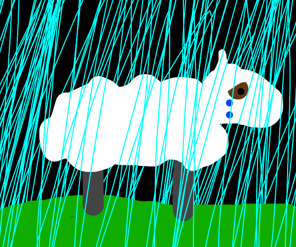 sad Shaun the Sheep in the rain :(