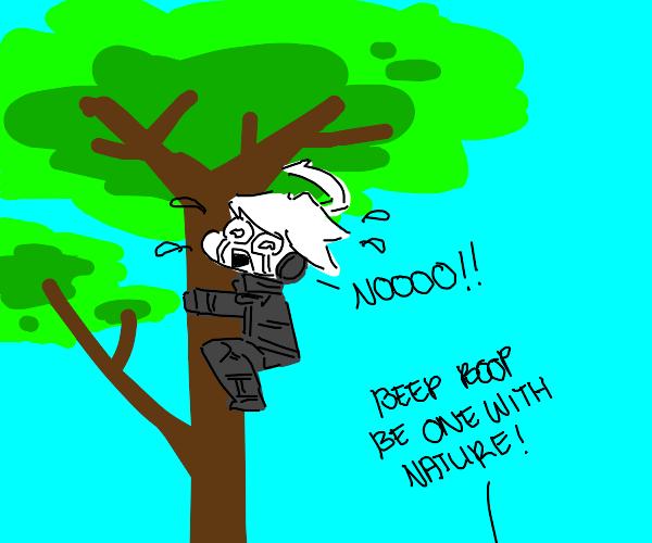 Robot stuck in tree