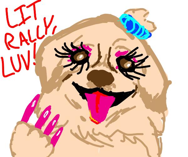 Dog with fake pink long nails