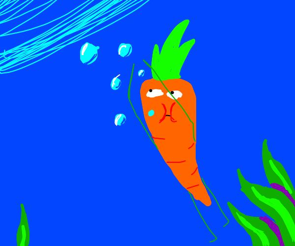 Drowning carrot.  How sad.
