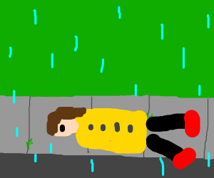 Laying on the sidewalk in the rain