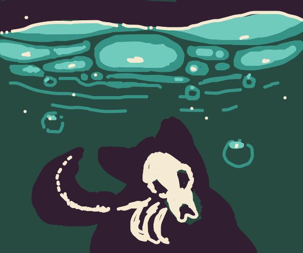 bones of a wolf in the ocean