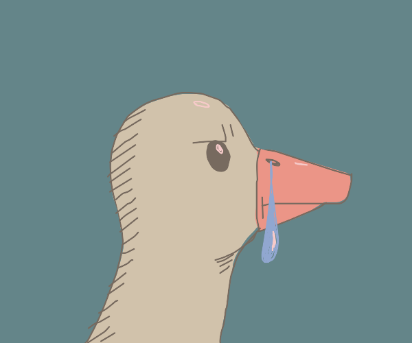 a duck with a cold
