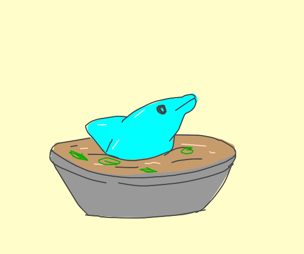 dOlPhIn sOuP