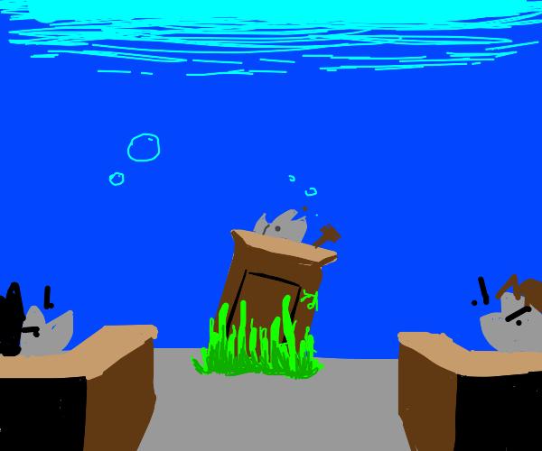 holding court under water