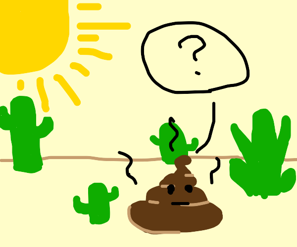 Poop is confused about being in a desert