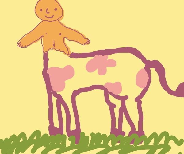 half horse half man