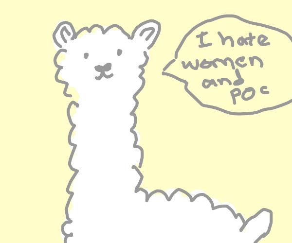 Racist mysoginistic alpaca