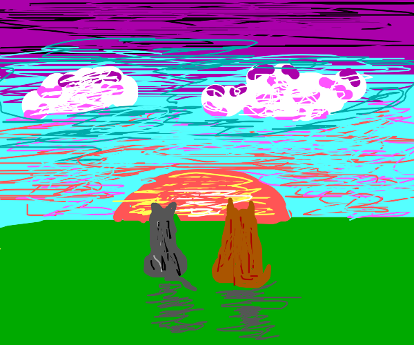two cats look at beautiful sunset