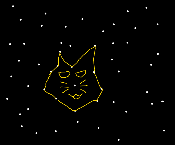 cats...IN SPAAACE!