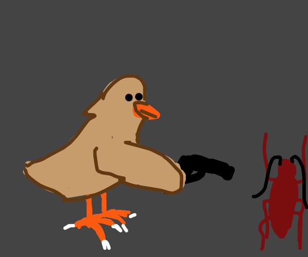 chicken shooting cockroach