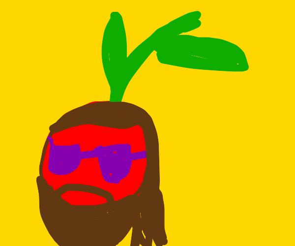 hippie cherry