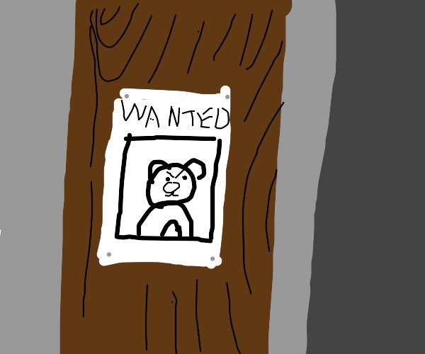 Evil Teddy Bear Most Wanted