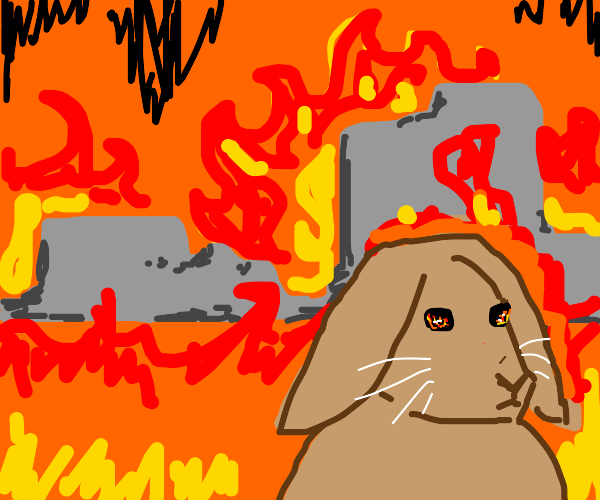 Bunny committed Arson