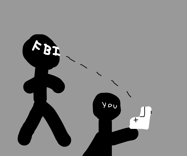 fbi looks at your ds