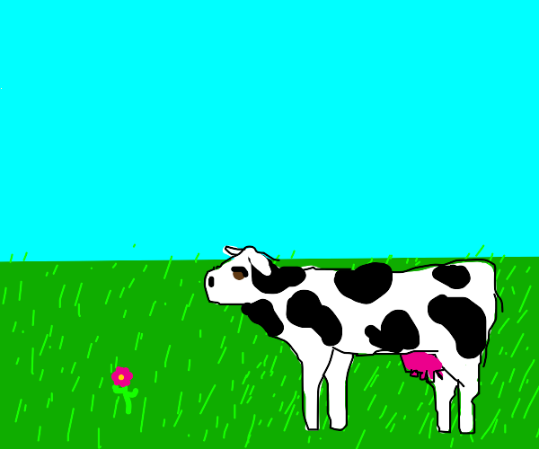 Cow staring at a flower