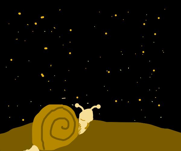 Snail ponders space