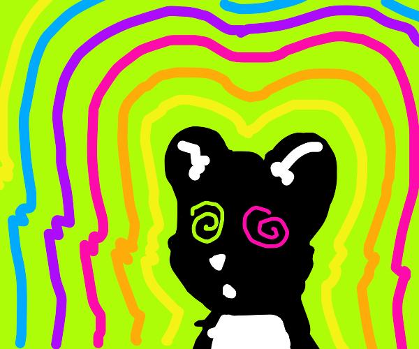 psychedelic skunk