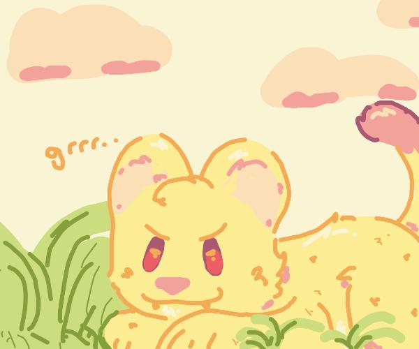 Lion cub growls