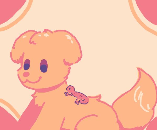 dog with lizard