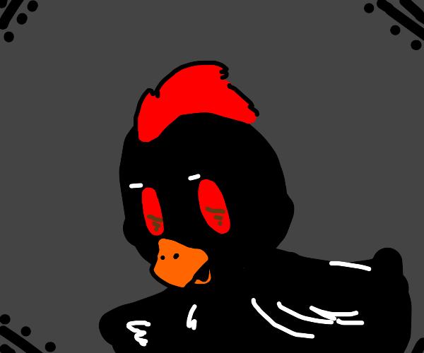 A black chicken :)