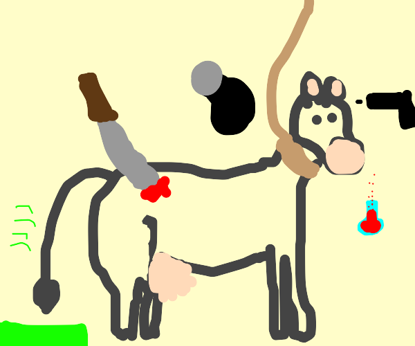 cow experiences every death possible