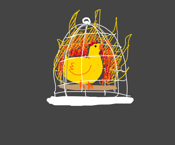 Firey Chicken in a birdcage