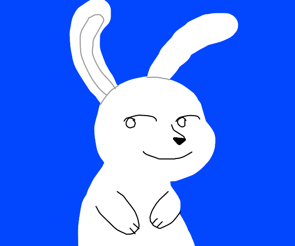 lenny face rabbit