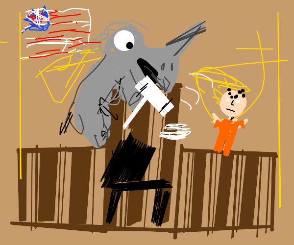 Rhino judge