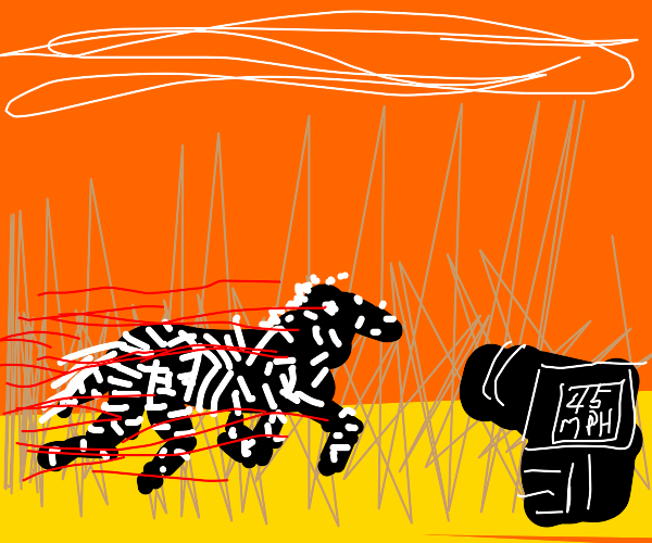 Fast Zebra