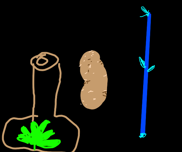 Bottle with a leaf, potato and a blue stick