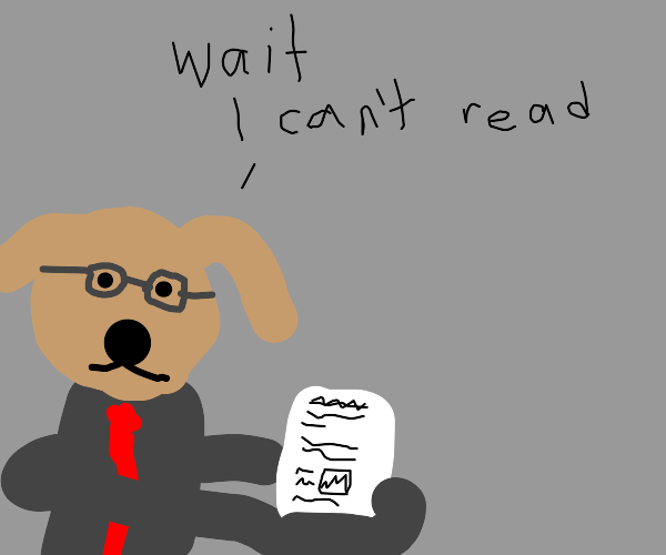 Business dog reads document