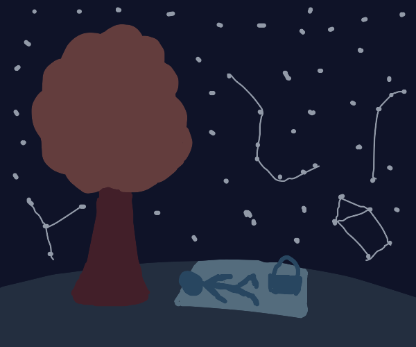 A picnic under the stars