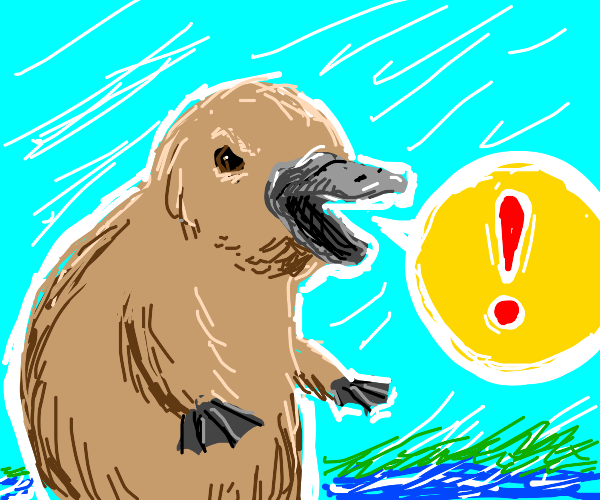 Platypus has something to say