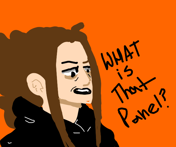 Someone questioning a panel