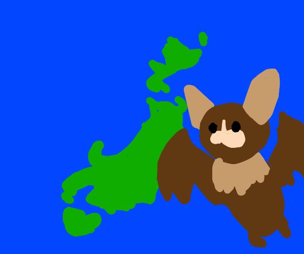 bats near island